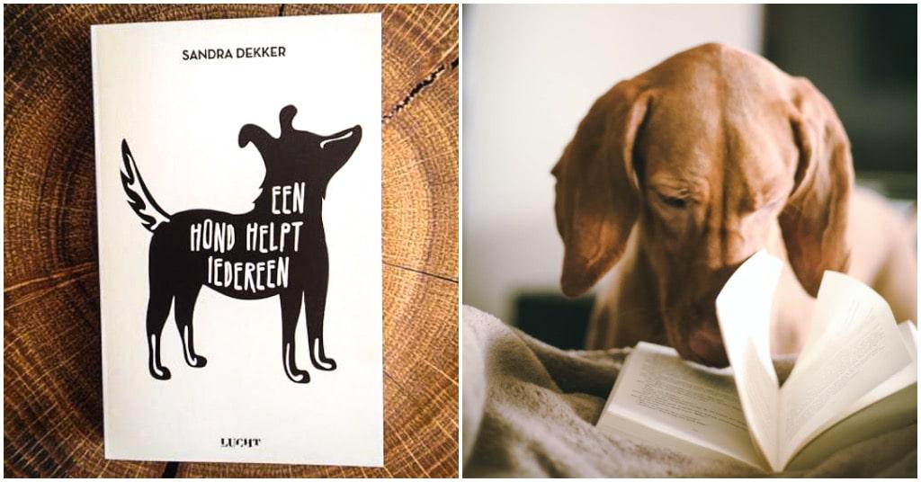 Een hond helpt iedereen boek van Sandra Dekker