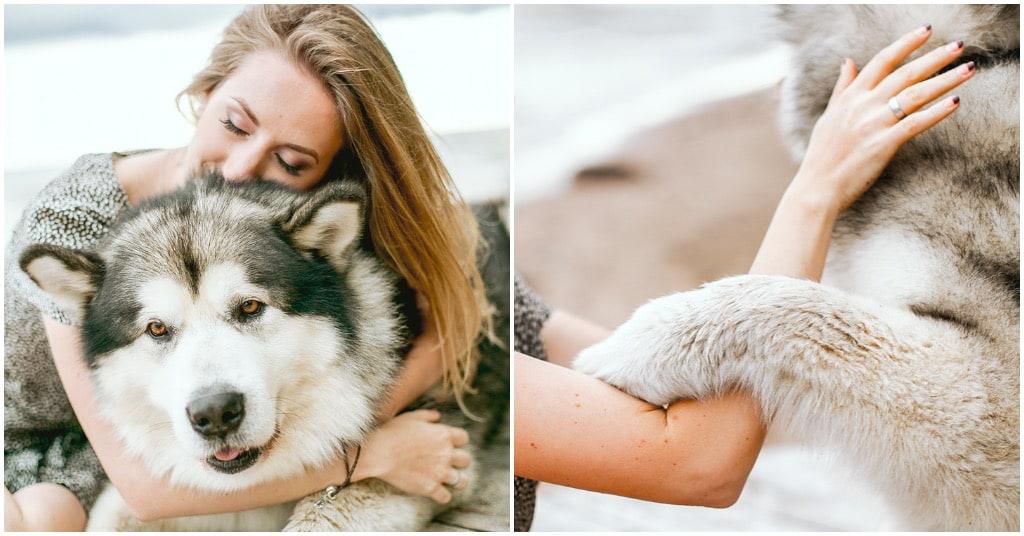 Hulphond anorexia informatie bij Puur Honden