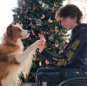 Hulphond Bliss en Noah voor kerstboom